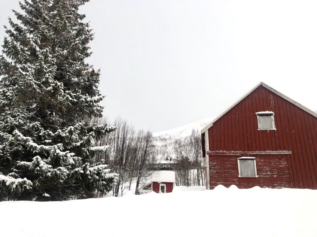 Tromsø'da gezilecek yerler